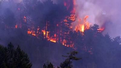 Beyşehir'de orman yangını - KONYA
