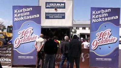 Kovid-19 tedbirleri altında kurbanlıklar kesildi - ERZURUM
