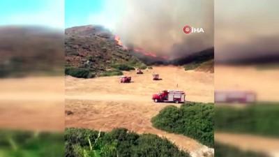 Bakan Pakdemirli: 'Seferihisar'daki yangın kontrol altında'