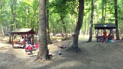 Belgrad Ormanı piknikçilerle hareketlendi - İSTANBUL