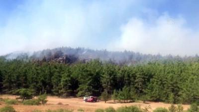 Menderes'te orman yangını (2) - İZMİR