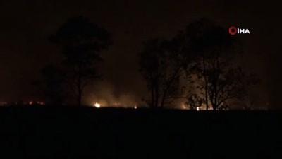 Sazlık alanda başlayan yangın şiddetli rüzgâr nedeniyle ormana sıçradı