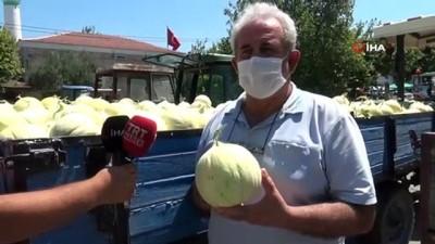 'Yeşil Çomlu kavunu' sofralardaki yerini almaya hazırlanıyor