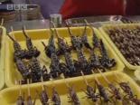 Çinlilerin İlginç Yemekleri
