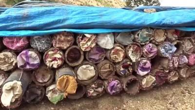 Herekol Dağı'nda 'huzurlu' bal üretimi - SİİRT