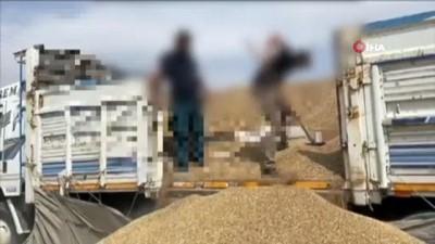 Ceylanpınar Gümrük Kapısı'nda 37 bin 500 paket kaçak sigara ele geçirildi