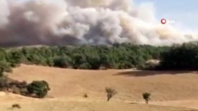 Manisa'daki orman yangınına karadan müdahale devam ediyor