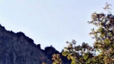 Madra Dağı'nda mahsur kalan 7 keçiyi itfaiye kurtardı - BALIKESİR
