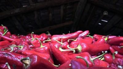 Kırmızı biberleri özel kerpiç evde geleneksel yöntemle kurutuyorlar - BİLECİK