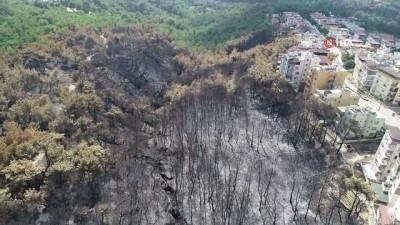 Hatay'da yanan ağaçlar soğutuluyor