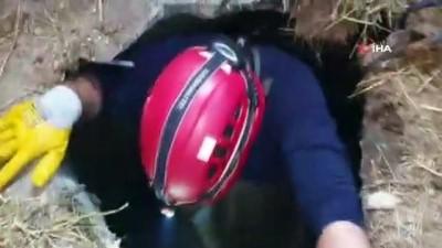 Susurluk'ta kuyuya düşen kuzuyu itfaiye kurtardı