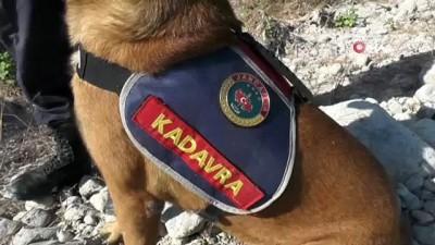 633 gündür kayıp olan Buse için köpekli arama
