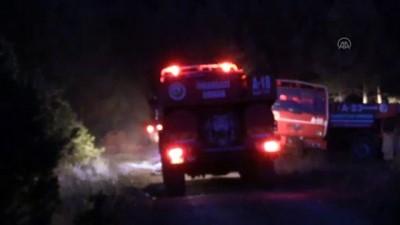 KASTAMONU - Araç'ta orman yangını (2)