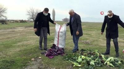 Saruhanlı Belediyesi yaban hayvanlarını unutmadı