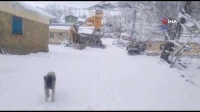Tunceli'de Mart ayında yağan kar, 20 köy yolunu kapattı