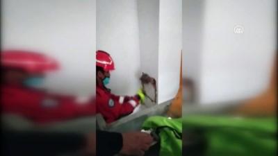 MUĞLA - Fethiye'de bacada mahsur kalan kedi kurtarıldı