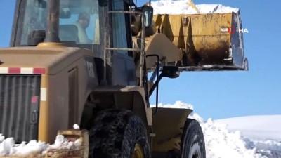 Ağrı'da bahar ayında karla zorlu mücadele