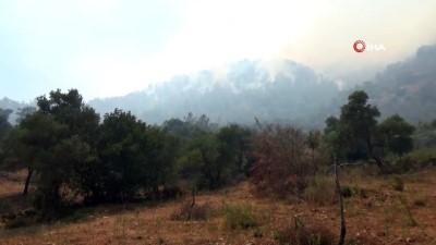 Orman yangını 6 saattir devam ediyor