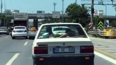 Trafikte ilginç görüntü: Uyuyan çocuğu arabanın arka camına yatırdı