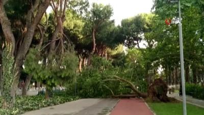 Ödemiş ve Kiraz'da fırtına etkili oldu: Çatılar uçtu, ağaçlar devrildi