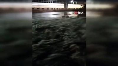 ÇATES'in kimyasalları denize döktüğü iddiası