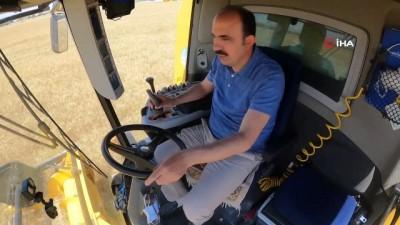 Konya'da atıl araziler ekilip hasadı yapıldı geliri vatandaşa aktarılacak