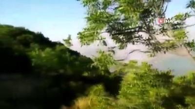 Tunceli'deki orman yangını devam ediyor