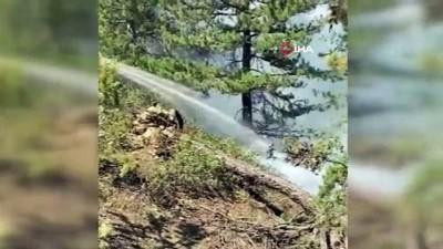 - Konya'da çıkan orman yangını kontrol altına alındı